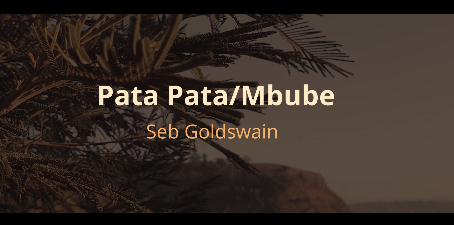 New Single Out Now!   Pata Pata/Mbube